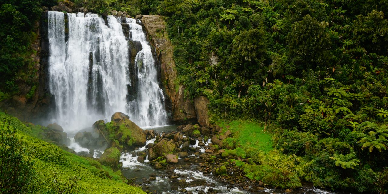 Mangapohue Natural Bridges and Marokopa Falls: A Quick Side Trip from the Waitomo Glowworm Caves